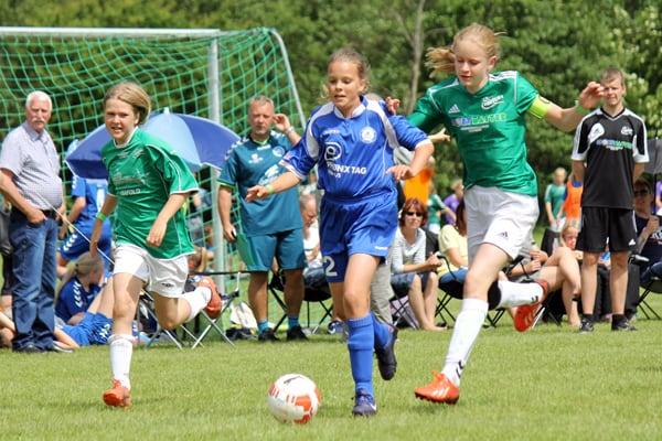 kvindelandsholdet fodbold 2014